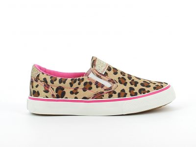 Parga-Leopard1